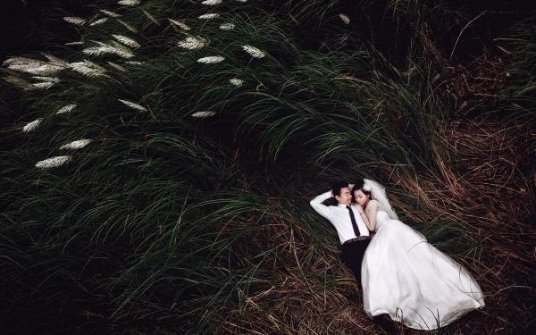 Đồng cỏ lau - Chốn bình yên của tình yêu