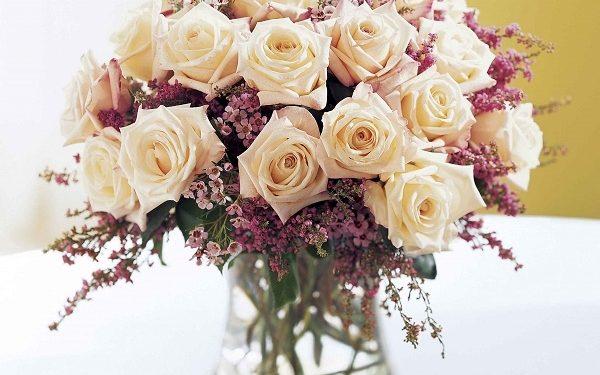 Chọn hoa với màu sắc yêu thích