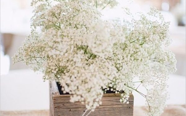 Chọn lọ hoa bằng gỗ